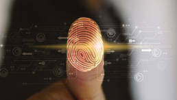 Identity Management Services