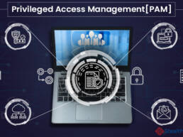 Privileged Access Management (PAM) Solutions