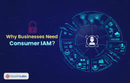 Identity & Access Management (IAM)
